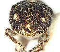 Small Curculionidae - Sibinia variegata