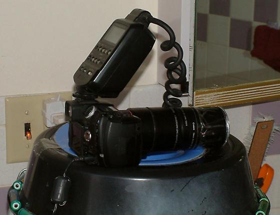 Camera on Light Arena