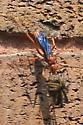 Spider wasp? - Tachypompilus ferrugineus