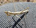 Horned Ground Mantis - Yersiniops sophronicus - female