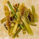 Caddisfly Larvae?