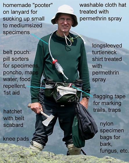 Jim McClarin, beetle hunter