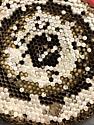 Vespula pensylvanica nest - Vespula pensylvanica
