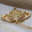 Checkered Apogeshna - Hodges#5177 - Apogeshna stenialis