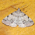 Unidentified Moth-140709-02 - Zanclognatha theralis