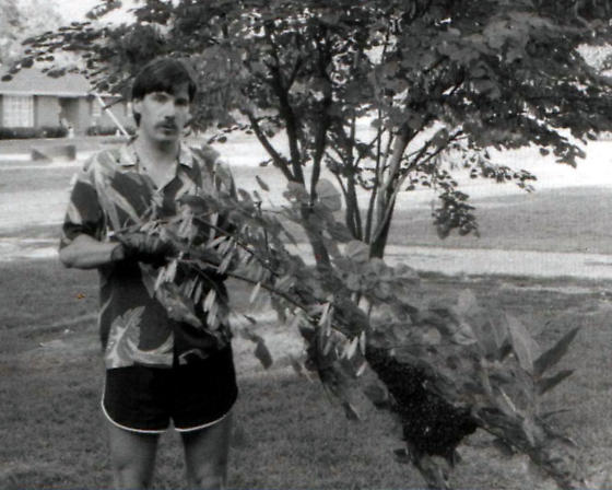 Kenneth Dwain Harrelson and a Swarm of Bees - male