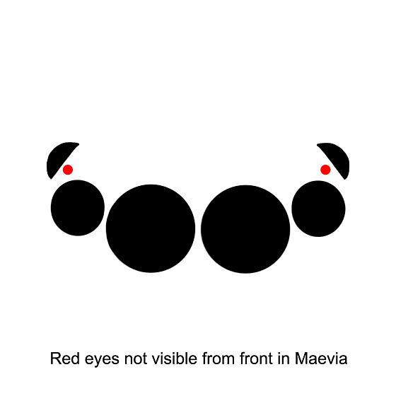 Jumping Spider Eye Arrangement - Maevia inclemens