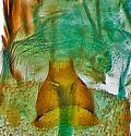 genitalia - Paralobesia spiraeifoliana - female