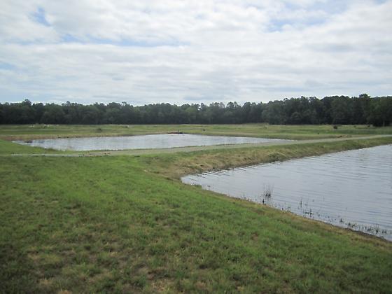 Harrison Lake National Fish Hatchery