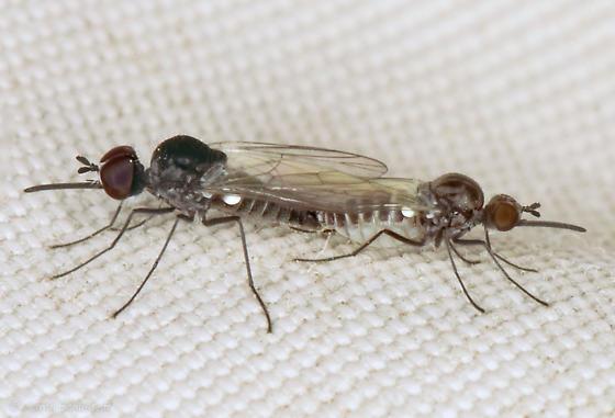 Mating pair of