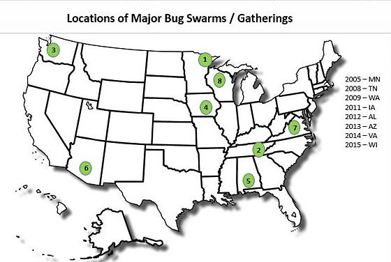 Locations of Bug Swarms / Gatherings