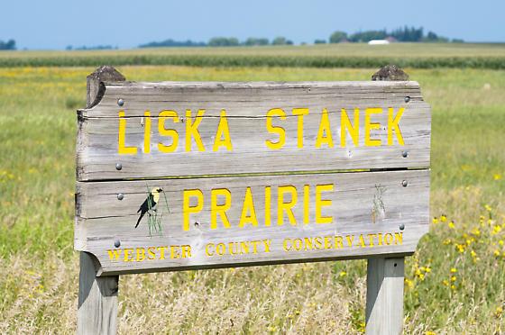 Liska-Stanek Prairie