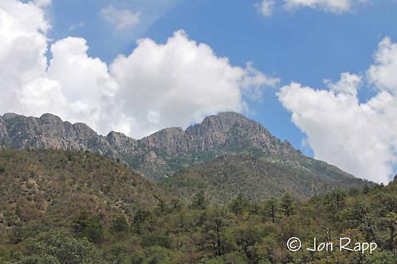 Santa Rita Range