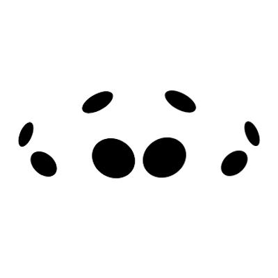 Cheiracanthium Eye Arrangement - Cheiracanthium