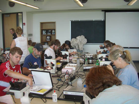 Practicing ID with microscopes