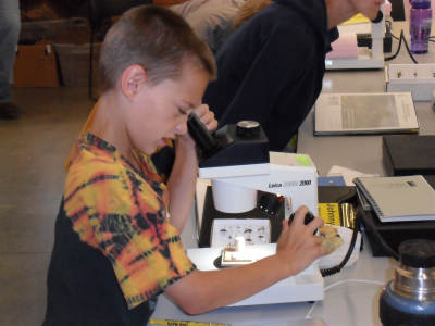 Jonny looking at bugs through the microscope.
