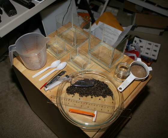 Aquatic Larvae Photo Setup