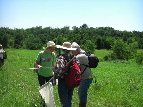 Collecting specimens in prairie