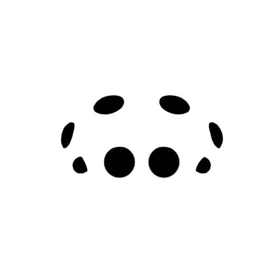 Castianeira eye arrangement - Castianeira amoena